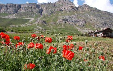 Espace Montagne - Val d'Isère